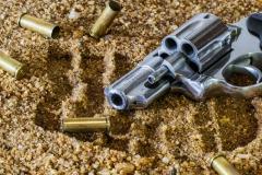 firearm-revolver